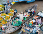Du lịch tour miền Tây sông nước - Phú Quốc 6 ngày 5 đêm